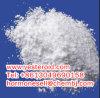 HCl 51-05-8 do Procaine do hidrocloro de Procaine do Anaesthesia tópico de pureza elevada