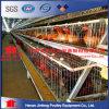 Exploração agrícola moderna do projeto novo uma gaiola da galinha da franga do frame