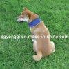 Koel Hond Neckcloth