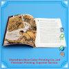 Impresión compensada del folleto del catálogo del compartimiento de la alta de Quailty impresión de encargo del folleto