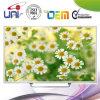 2015 Uni/OEM gute Qualitätsmoderne Auslegung 50 '' LED-Fernsehapparat