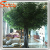 중국 제조자 나무가 인공적인 살아있는 Ficus 벵골 보리수에 의하여 설치한다