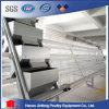Gabbia automatica di vendita calda della strumentazione di Chciken di lunga vita di alta efficienza