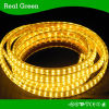 SMD3014 220V Double Row LED Strip Light