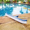 Brosse à piscine courbée de 18 po - Brosse de brosse de sol et de piscine