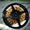 LED-Streifen (HK-F5050X15N-12)