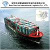 Ocean Shipping como LCL para Dallas, EUA - serviço porta a porta