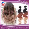 Человеческие волосы бразильских волос девственницы Remy 3 цветов Omber тона Weft (HBWB-A769)