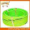 De fluorescente Groene Slang van de Tuin