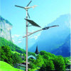 60W leiden met wind-Zonne Hybride Straatlantaarns met de Goedkeuring van Ce