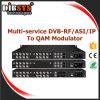Modulateur multifonctionnel de Qam