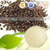 Estratto 98% Piperine CAS 94-62-2 del pepe nero
