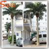 Openlucht het Modelleren Kunstmatige Palm Oconut