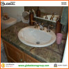 Apartment를 위한 Backsplash와 Rain Forest Green Marble Vanity Top