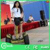 Bici eléctrica del motocrós del surtidor de China