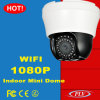 Auto Tracking Mini PTZ Surveillance Dome Webcam Onvif IP Camera