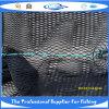 Rede sem nós de nylon dos peixes (SDC17820)