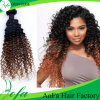 安い卸し売り方法様式のブラジルのOmbreのバージンの人間の毛髪の拡張