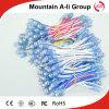 Stringa chiara esposta speciale rossa ALS-534