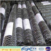 Hot Sale Electro Galvanized Hexagonal Chicken Wire Mesh (XA-HM408)