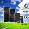 Bester verkaufenBluesun größter monokristalliner Sonnenkollektor China-