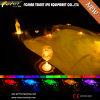 LED multicolore Light Bath Tub/Hot SPA con CE Certification