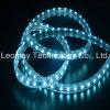 IP68 strisce impermeabili flessibili di tensione LED con CE RoHS