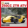 Roadster de la CEE 250cc Ztr Trike (MC-369)