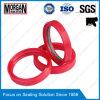 PTFE/NBR materieller Tdi Serie hydraulischer STOSSHEBER Rod-Scheuerschutz