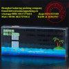 China-3D gedruckter freier Plastikkuchen-Paket-Kasten-Großverkauf