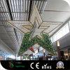 Lumières de décoration d'étoile de Noël DEL