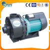 수영 Pool 3HP Caculating Pump