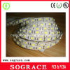 220V SMD LED flexible Strip Light con Rohscertificate