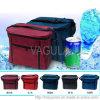 Le refroidisseur extérieur de VAGULA met en sac Hl35130