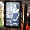 Haciendo publicidad de la muestra impermeable del movimiento en sentido vertical del aluminio LED (AL225D-A)