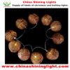 대중적인 등나무 공 LED 훈장 빛