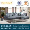 Salone moderno Sofa Furniture (669A)