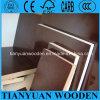 A película do certificado WBP Brown do GV do ISO enfrentou a madeira compensada