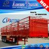 가축/반 말뚝 트럭 트레일러의 세 배 차축 측면 판