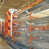 Il pollame alimenta a fornitori il tipo strumentazione di H dell'azienda agricola della gabbia del pollo di strato