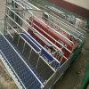 Equipo de la agricultura Granja de cerdos Granja de crianza