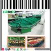 Crémaillères neuves de légume d'île de modèle de supermarché