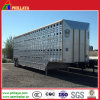 半家畜の動物のキャリアのトラックアルミニウムボックスヒツジの牛トレーラー