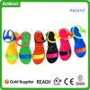 Sandalo di plastica del capretto della radura della spiaggia di estate (RW24147)