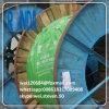 câble d'alimentation d'armure isolé par XLPE de fil d'acier de 0.6/1KV 1*10 SQMM