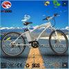 Vélo de montagne électrique en gros de bonne qualité avec la suspension hydraulique