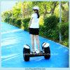 Levarsi in piedi in su 2 Wheel Adult Balance Black Electric Scooter