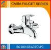 La poignée simple élégante en laiton Bain-Versent le robinet (CB-33903)