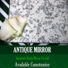Oggetto d'antiquariato dello specchio dell'argento di buona qualità