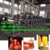 FruchtJuicerMachine/Spiral Juicer-Hersteller